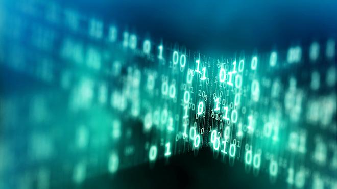 Binary Code Web